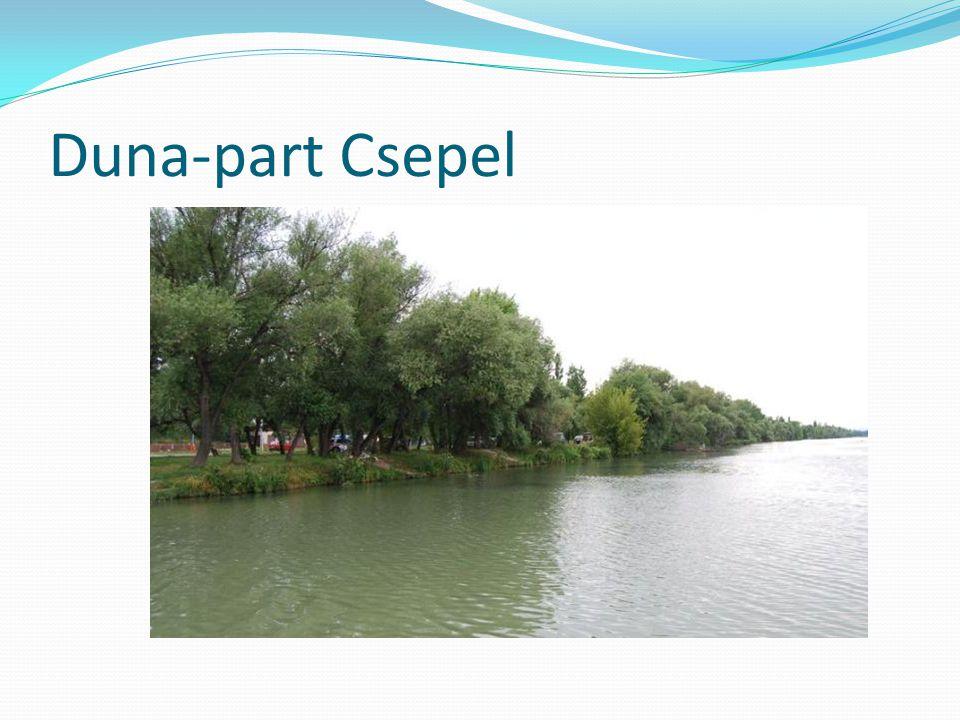 Duna-part Csepel
