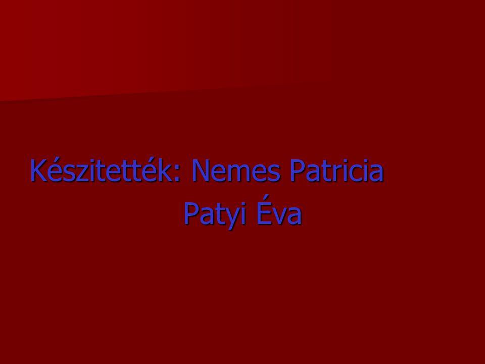 Készitették: Nemes Patricia Patyi Éva