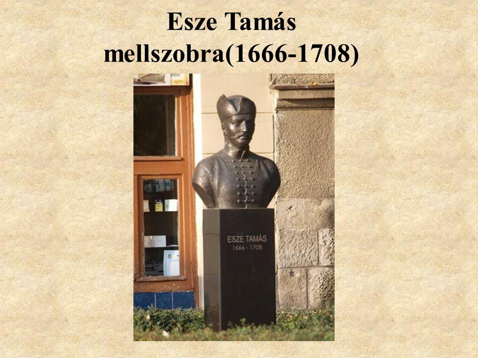 Esze Tamás mellszobra(1666-1708)