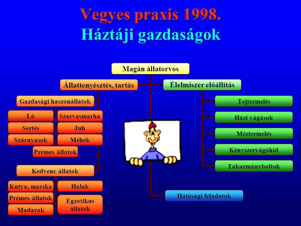 Vegyes praxis 1998. Háztáji gazdaságok