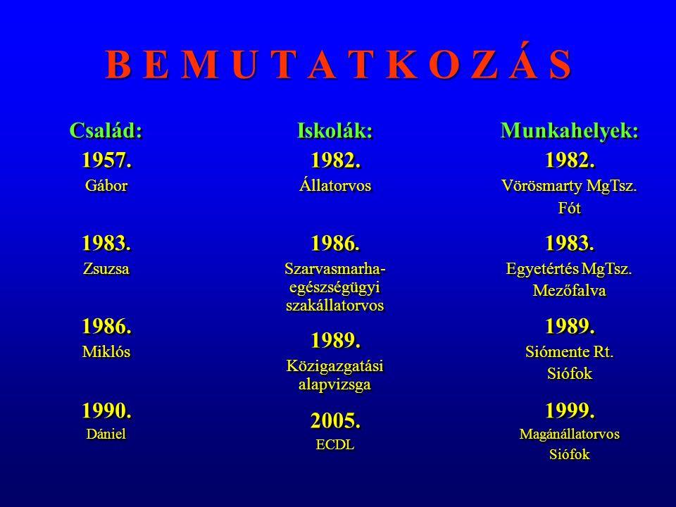 Vegyes praxis 1998.– 2005. Változások kora 1998. 1998.