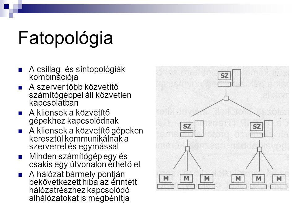Fatopológia  A csillag- és síntopológiák kombinációja  A szerver több közvetítő számítógéppel áll közvetlen kapcsolatban  A kliensek a közvetítő gépekhez kapcsolódnak  A kliensek a közvetítő gépeken keresztül kommunikálnak a szerverrel és egymással  Minden számítógép egy és csakis egy útvonalon érhető el  A hálózat bármely pontján bekövetkezett hiba az érintett hálózatrészhez kapcsolódó alhálózatokat is megbénítja