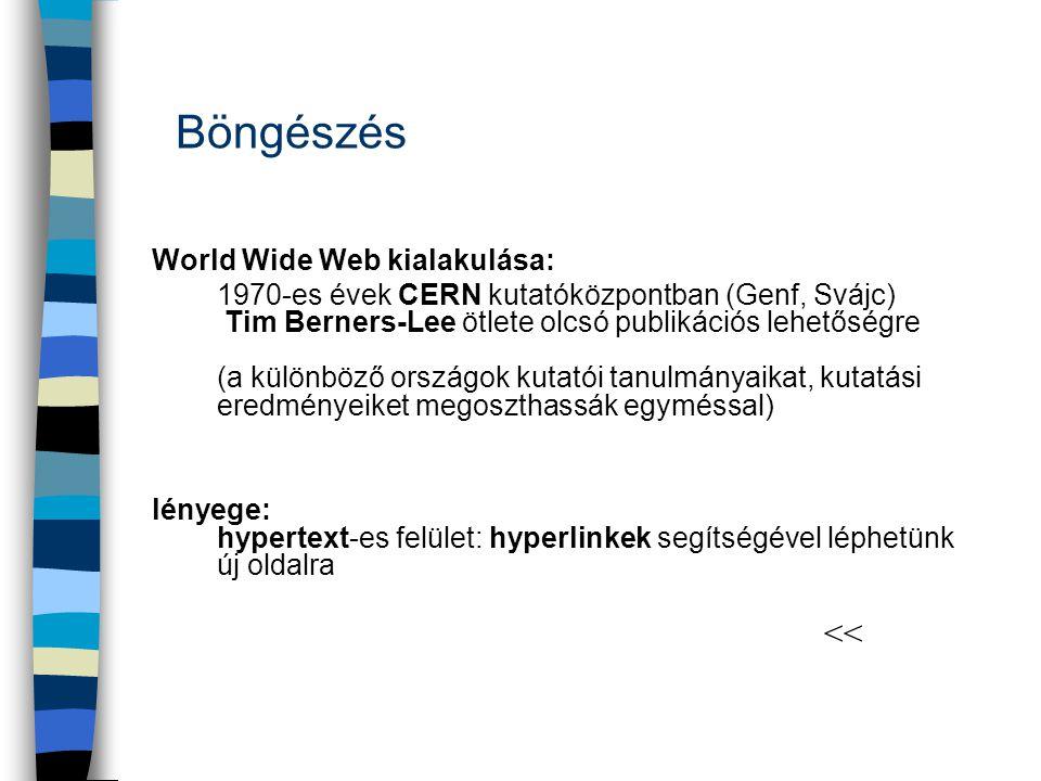World Wide Web kialakulása: 1970-es évek CERN kutatóközpontban (Genf, Svájc) Tim Berners-Lee ötlete olcsó publikációs lehetőségre (a különböző országo