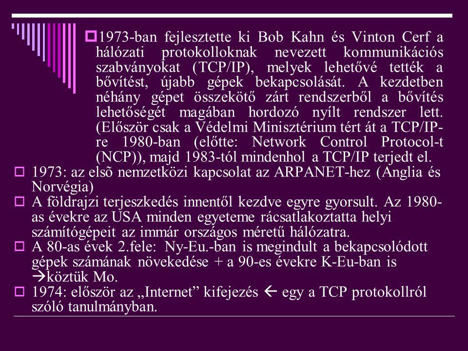  1973-ban fejlesztette ki Bob Kahn és Vinton Cerf a hálózati protokolloknak nevezett kommunikációs szabványokat (TCP/IP), melyek lehetővé tették a bő