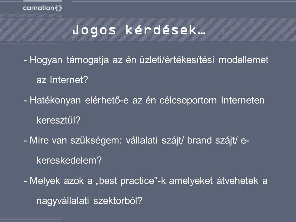 - Hogyan támogatja az én üzleti/értékesítési modellemet az Internet.