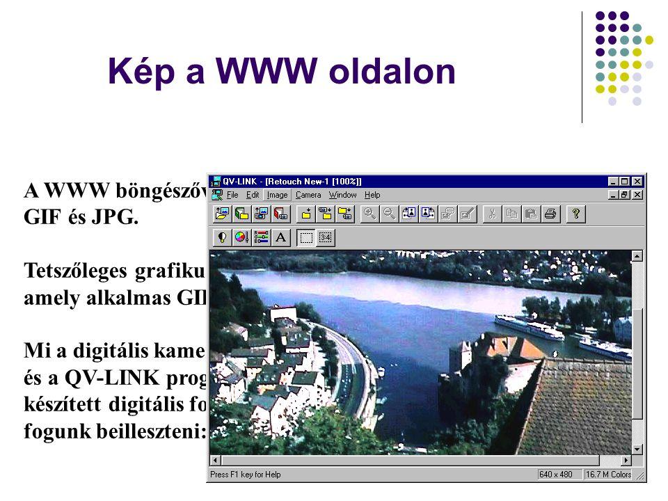 Kép a WWW oldalon A WWW böngészővel megjeleníthető képek formátumai: GIF és JPG. Tetszőleges grafikus programmal készülhetnek, amely alkalmas GIF ille