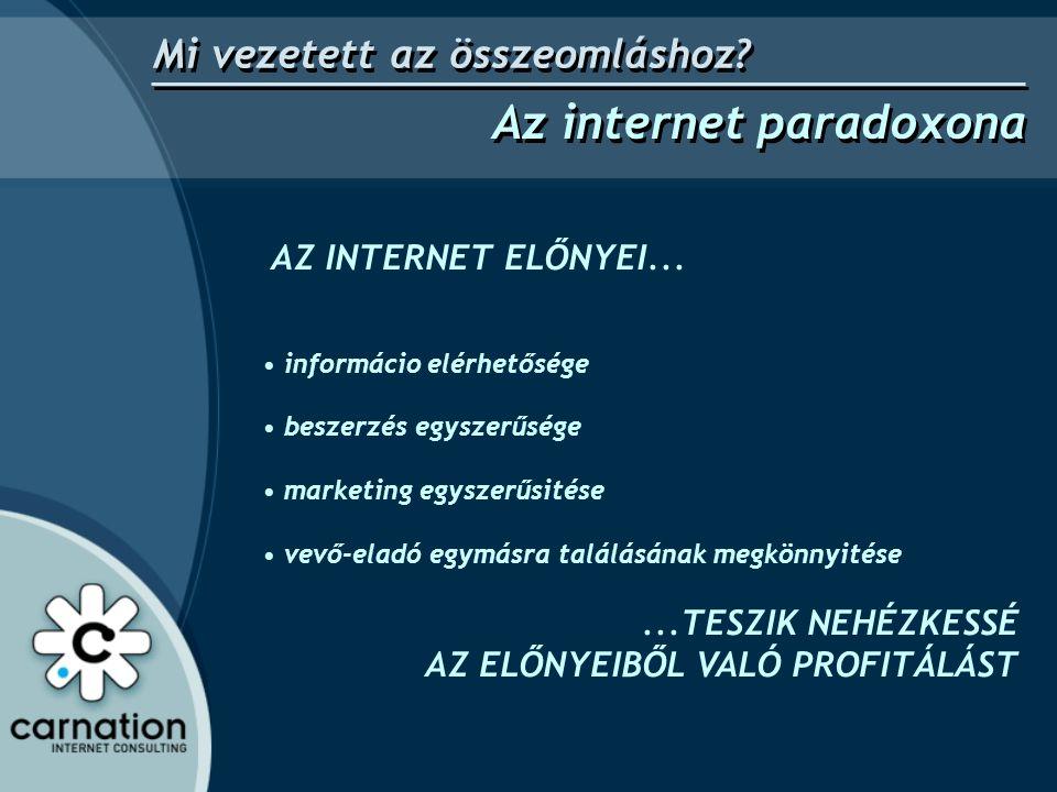 AZ INTERNET ELŐNYEI... • informácio elérhetősége • beszerzés egyszerűsége • marketing egyszerűsitése • vevő-eladó egymásra találásának megkönnyitése..