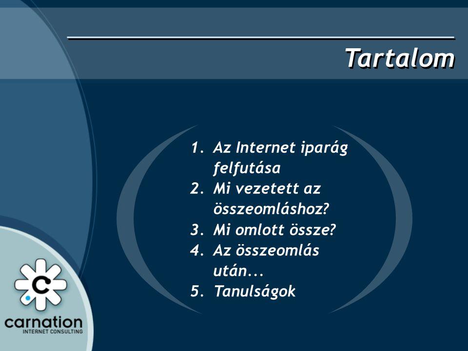 Tartalom 1.Az Internet iparág felfutása 2.Mi vezetett az összeomláshoz? 3.Mi omlott össze? 4.Az összeomlás után... 5.Tanulságok