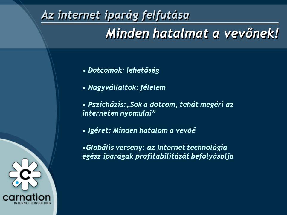 """• Dotcomok: lehetőség • Nagyvállaltok: félelem • Pszichózis:""""Sok a dotcom, tehát megéri az interneten nyomulni • Igéret: Minden hatalom a vevőé •Globális verseny: az Internet technológia egész iparágak profitabilitását befolyásolja Az internet iparág felfutása Minden hatalmat a vevőnek!"""