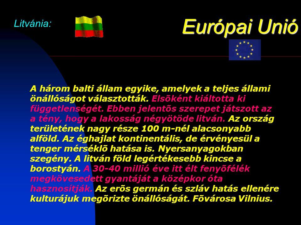 Európai Unió Litvánia: A három balti állam egyike, amelyek a teljes állami önállóságot választották.