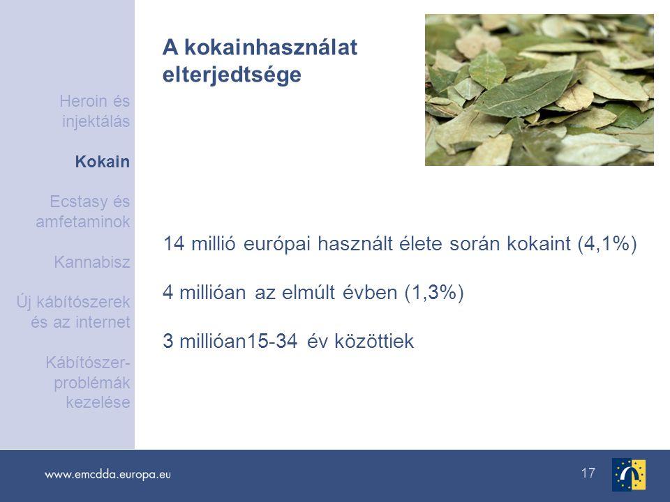 17 14 millió európai használt élete során kokaint (4,1%) 4 millióan az elmúlt évben (1,3%) 3 millióan15-34 év közöttiek A kokainhasználat elterjedtség