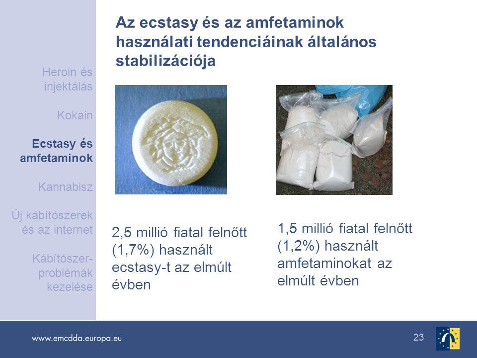 23 2,5 millió fiatal felnőtt (1,7%) használt ecstasy-t az elmúlt évben 1,5 millió fiatal felnőtt (1,2%) használt amfetaminokat az elmúlt évben Az ecst