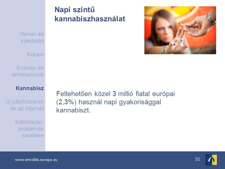 30 Napi szintű kannabiszhasználat Feltehetően közel 3 millió fiatal európai (2,3%) használ napi gyakorisággal kannabiszt. Heroin és injektálás Kokain