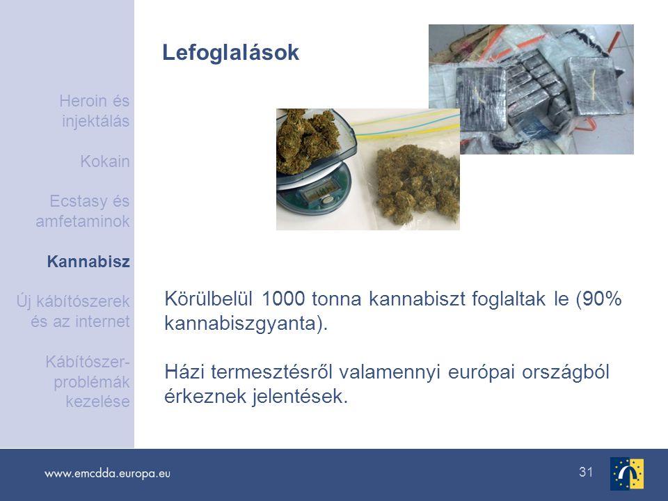 31 Lefoglalások Körülbelül 1000 tonna kannabiszt foglaltak le (90% kannabiszgyanta). Házi termesztésről valamennyi európai országból érkeznek jelentés
