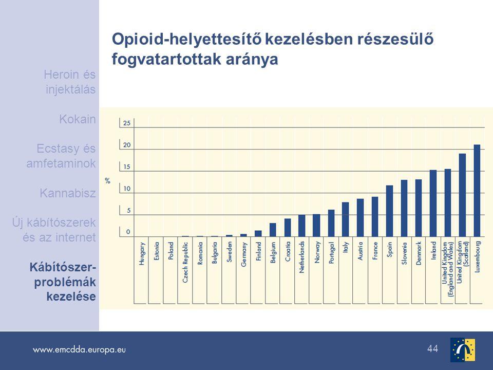 44 Opioid-helyettesítő kezelésben részesülő fogvatartottak aránya Heroin és injektálás Kokain Ecstasy és amfetaminok Kannabisz Új kábítószerek és az i