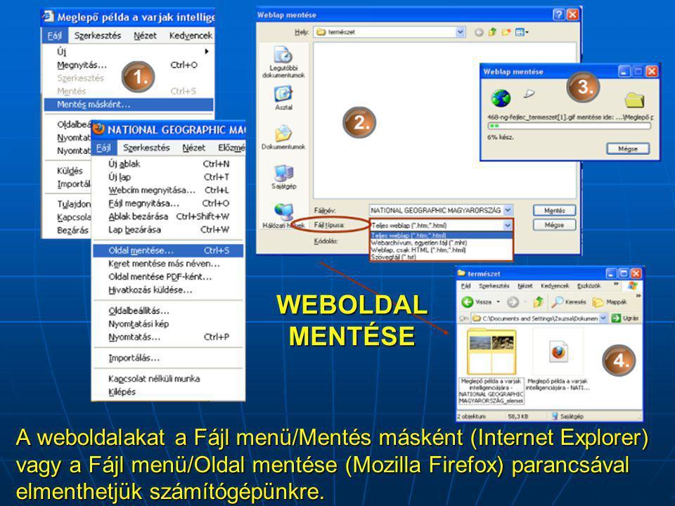 A weboldalakat a Fájl menü/Mentés másként (Internet Explorer) vagy a Fájl menü/Oldal mentése (Mozilla Firefox) parancsával elmenthetjük számítógépünkre.