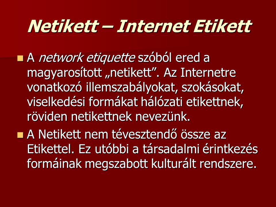 """ A network etiquette szóból ered a magyarosított """"netikett"""". Az Internetre vonatkozó illemszabályokat, szokásokat, viselkedési formákat hálózati etik"""