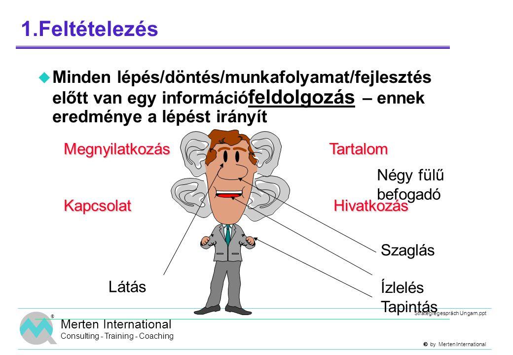  by Merten International Strategiegespräch Ungarn.ppt ® Merten International Consulting - Training - Coaching 1.Feltételezés  Minden lépés/döntés/
