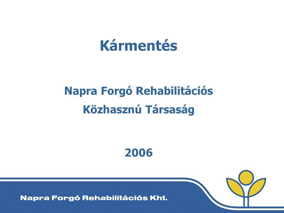Kármentés Napra Forgó Rehabilitációs Közhasznú Társaság 2006