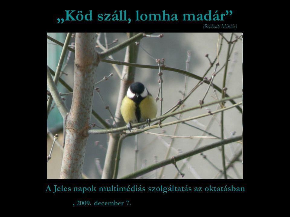 """A Jeles napok multimédiás szolgáltatás az oktatásban """"Köd száll, lomha madár , 2009."""