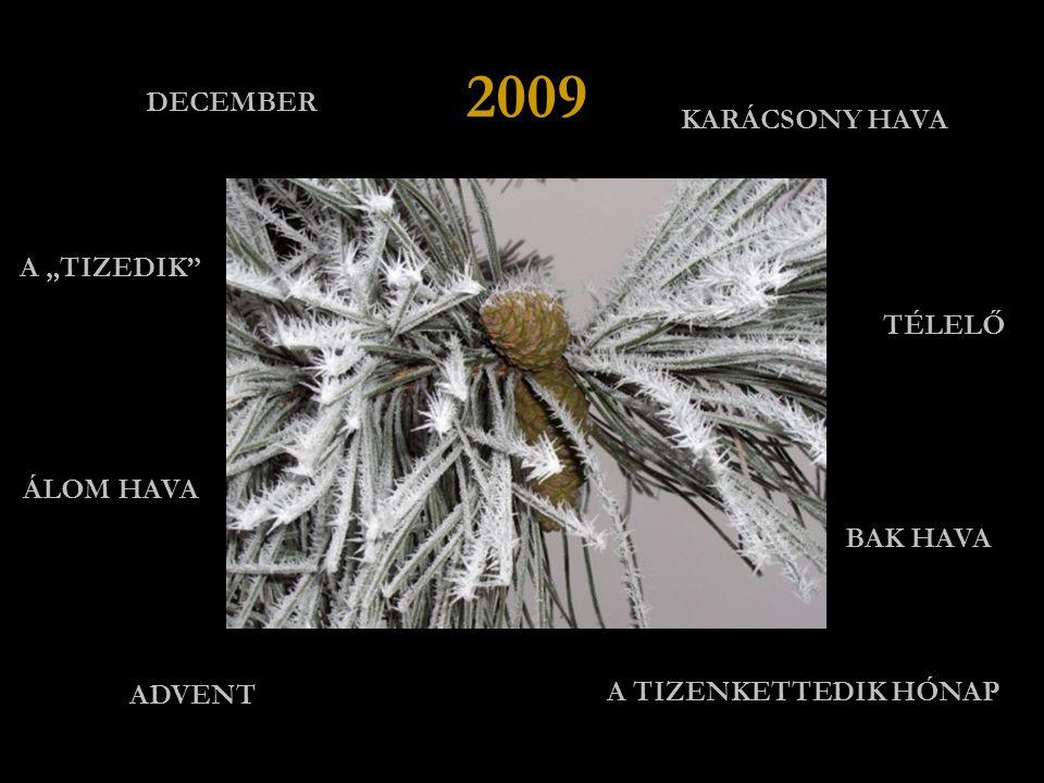 """DECEMBER KARÁCSONY HAVA TÉLELŐ ÁLOM HAVA ADVENT A TIZENKETTEDIK HÓNAP A """"TIZEDIK 2009 BAK HAVA"""