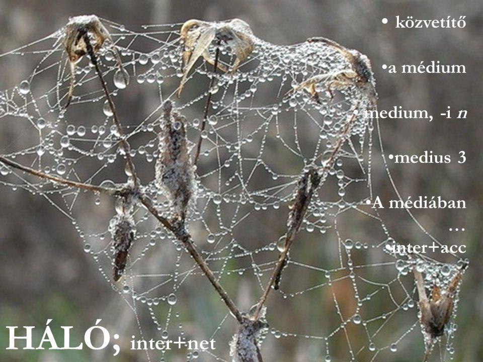 HÁLÓ; inter+net • közvetítő •a médium • medium, -i n •medius 3 •A médiában … •inter+acc