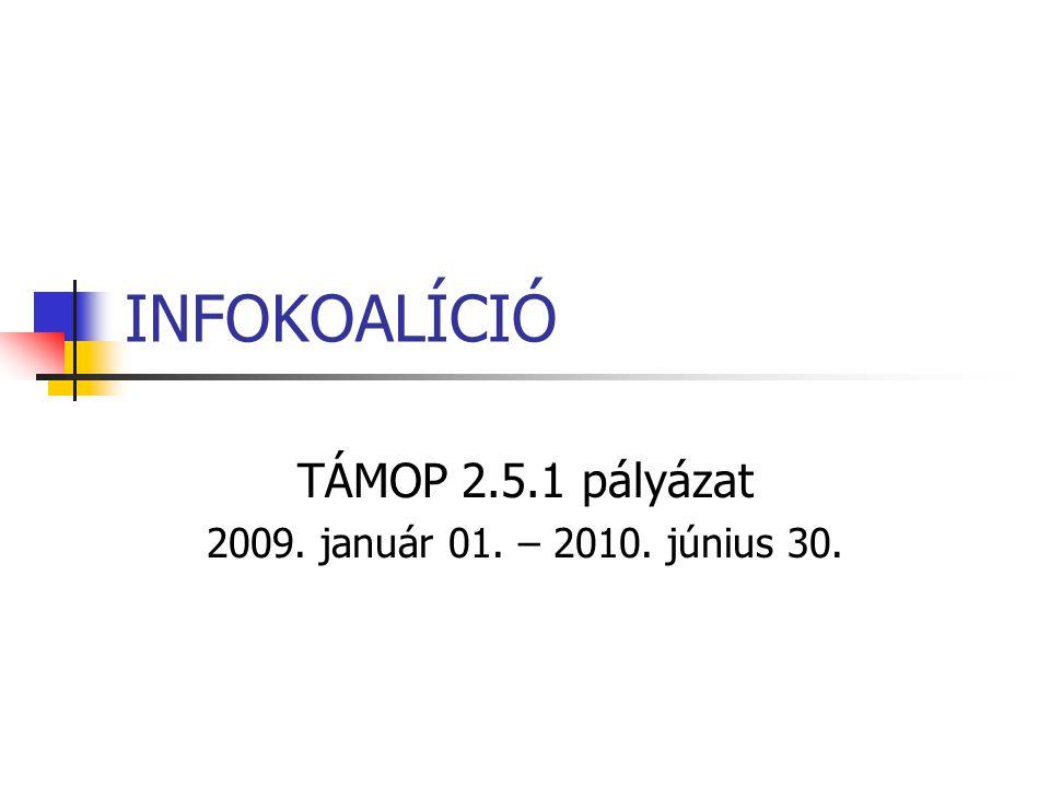 INFOKOALÍCIÓ TÁMOP 2.5.1 pályázat 2009. január 01. – 2010. június 30.