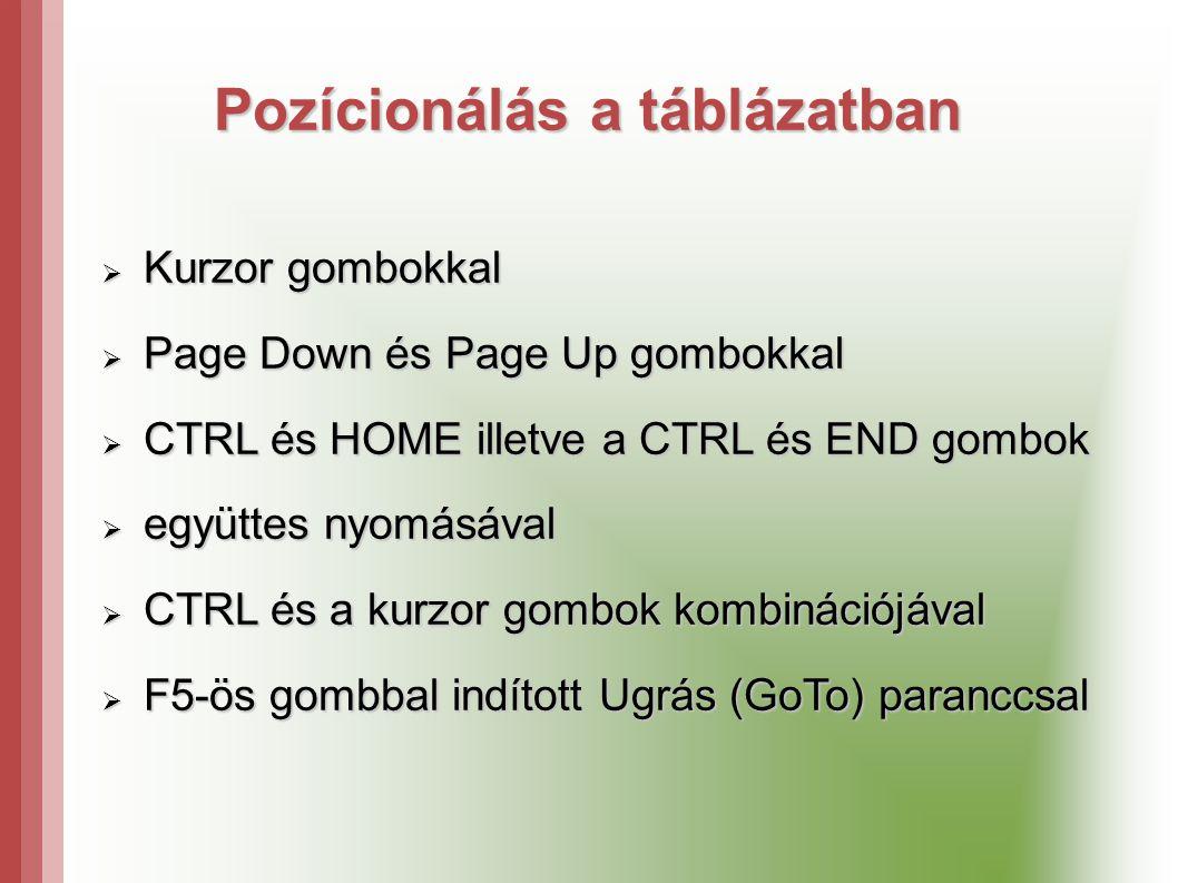 Pozícionálás a táblázatban  Kurzor gombokkal  Page Down és Page Up gombokkal  CTRL és HOME illetve a CTRL és END gombok  együttes nyomásával  CTRL és a kurzor gombok kombinációjával  F5-ös gombbal indított Ugrás (GoTo) paranccsal