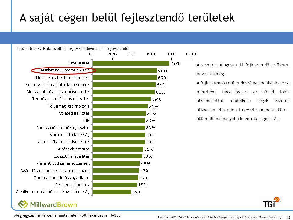 Forrás: KKV TGI 2010 – Célcsoport Index Magyarország – © Millward Brown Hungary A saját cégen belül fejlesztendő területek A vezetők átlagosan 11 fejlesztendő területet neveztek meg.