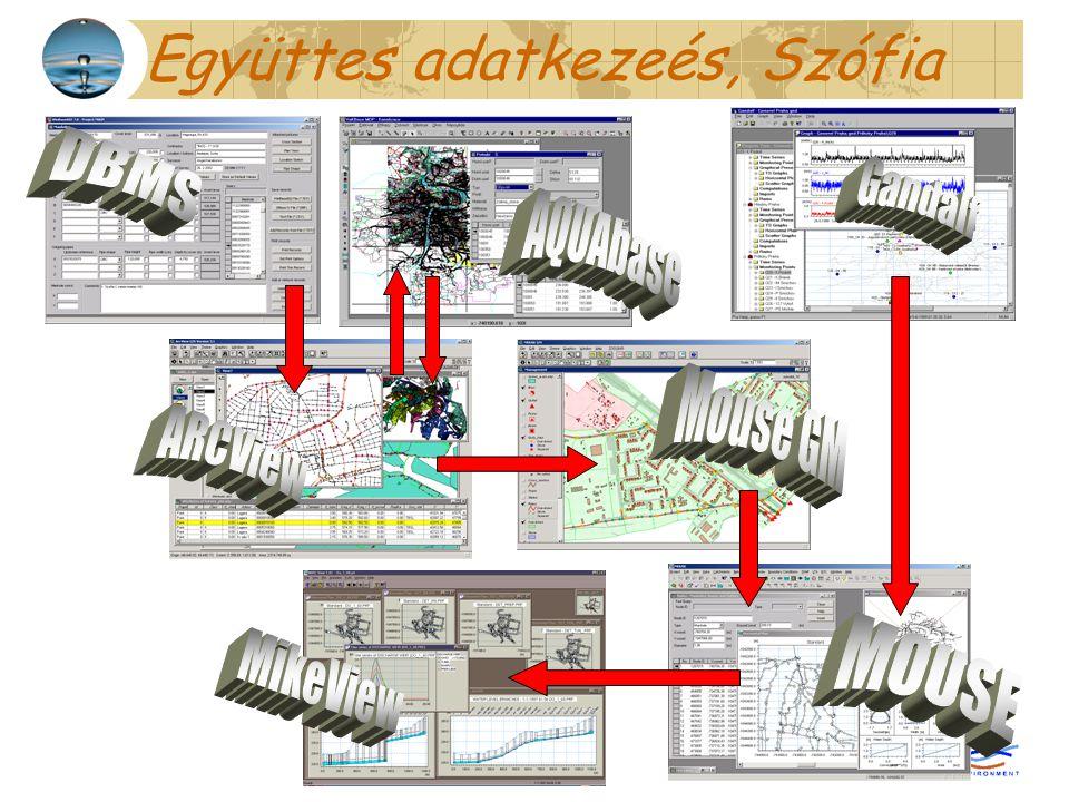 Együttes adatkezeés, Szófia