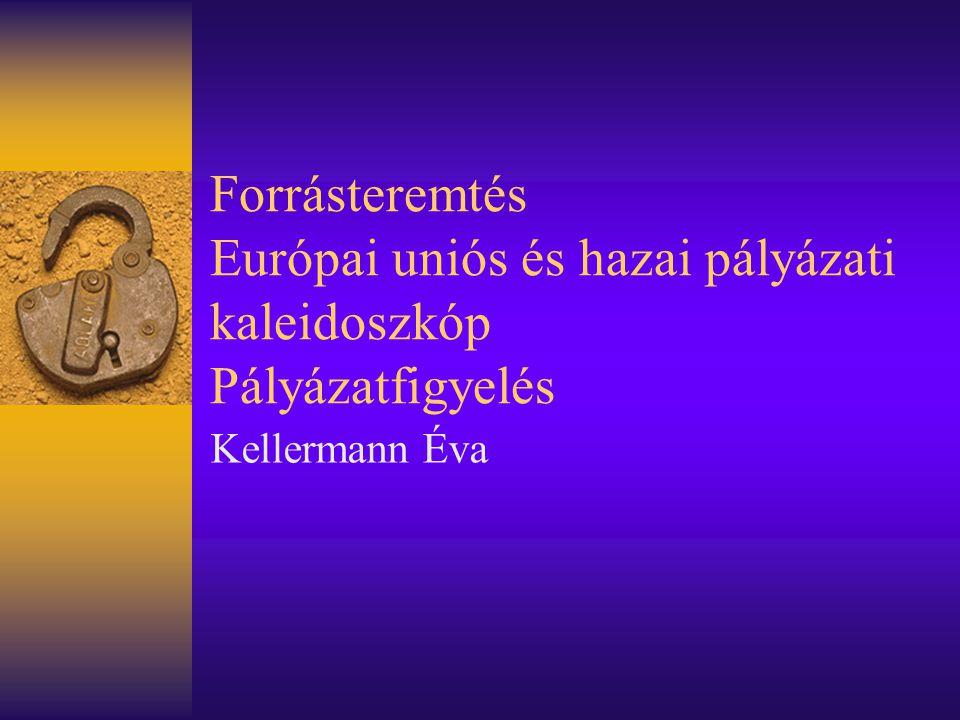 Forrásteremtés Európai uniós és hazai pályázati kaleidoszkóp Pályázatfigyelés Kellermann Éva
