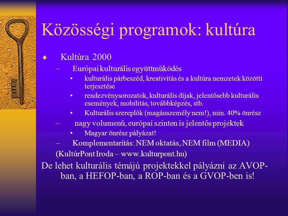 Közösségi programok: kultúra  Kultúra 2000 –Európai kulturális együttműködés •kulturális párbeszéd, kreativitás és a kultúra nemzetek közötti terjesz