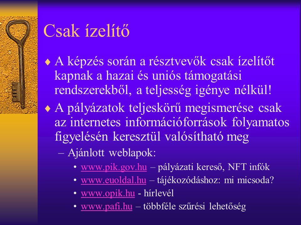 Közösségi Programok  A Bizottság kezdeményezései  Valamennyi tagállam, sőt tagjelöltek és akár önkéntes befizetők számára (Románia, Bulgária, Norvégia, stb.)  Nemzetközi együttműködésben –Nyelvtudás elengedhetetlen, kivéve magyar munkanyelvű pályázatok (határontúli magyarokkal).
