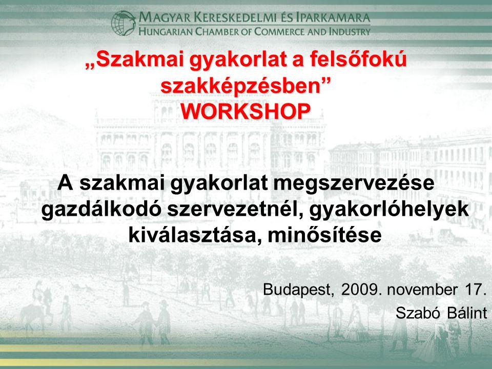 """""""Szakmai gyakorlat a felsőfokú szakképzésben WORKSHOP A szakmai gyakorlat megszervezése gazdálkodó szervezetnél, gyakorlóhelyek kiválasztása, minősítése Budapest, 2009."""