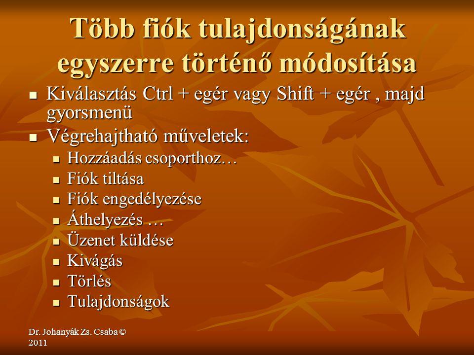 Dr. Johanyák Zs. Csaba © 2011 Több fiók tulajdonságának egyszerre történő módosítása  Kiválasztás Ctrl + egér vagy Shift + egér, majd gyorsmenü  Vég