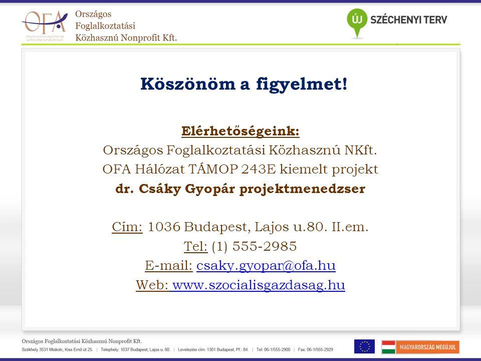 Köszönöm a figyelmet! Elérhetőségeink: Országos Foglalkoztatási Közhasznú NKft. OFA Hálózat TÁMOP 243E kiemelt projekt dr. Csáky Gyopár projektmenedzs