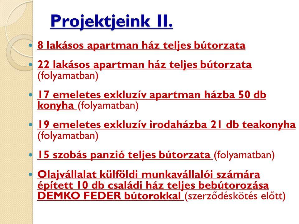 Projektjeink II.