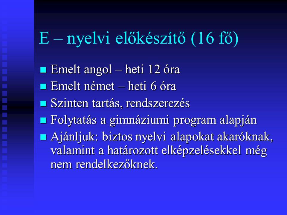 E – nyelvi előkészítő (16 fő)  Emelt angol – heti 12 óra  Emelt német – heti 6 óra  Szinten tartás, rendszerezés  Folytatás a gimnáziumi program alapján  Ajánljuk: biztos nyelvi alapokat akaróknak, valamint a határozott elképzelésekkel még nem rendelkezőknek.
