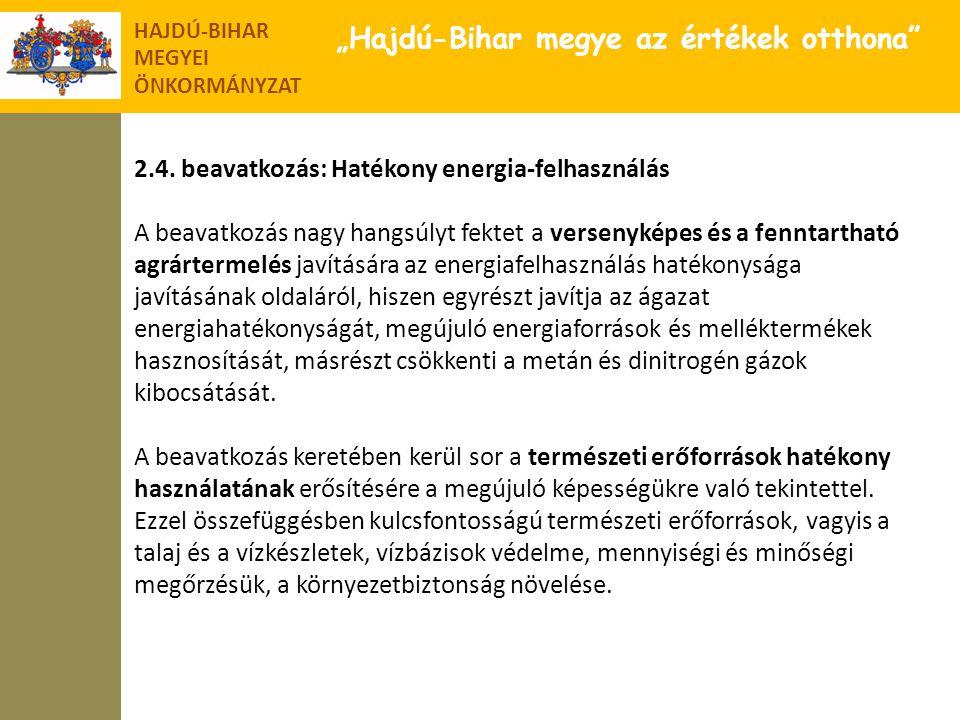 """HAJDÚ-BIHAR MEGYEI ÖNKORMÁNYZAT """"Hajdú-Bihar megye az értékek otthona"""" 2.4. beavatkozás: Hatékony energia-felhasználás A beavatkozás nagy hangsúlyt fe"""