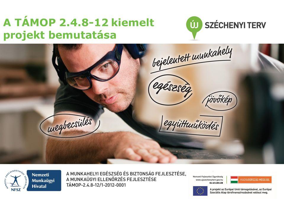 A projekt közvetlen céljai Munkaegészségügyi rendszer fejlesztése (munkaképesség új szemléletű felmérésének bevezetése, eszközfejlesztés) Társadalom megszólítása (állampolgári tudatosság szintjének növelése) Hatósági ellenőrzés fejlesztése (rendszer és folyamatok fejlesztése, a hatékonyság növelése) A kiemelt projekt közvetlen céljai