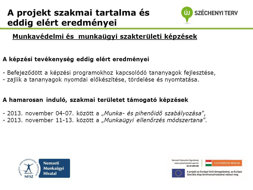 Jogsegélyszolgálatot nyújtó projektek szakmai koordinálása A projekt szakmai tartalma és eddig elért eredményei Jogpont+Mini Szakmai Konferencia