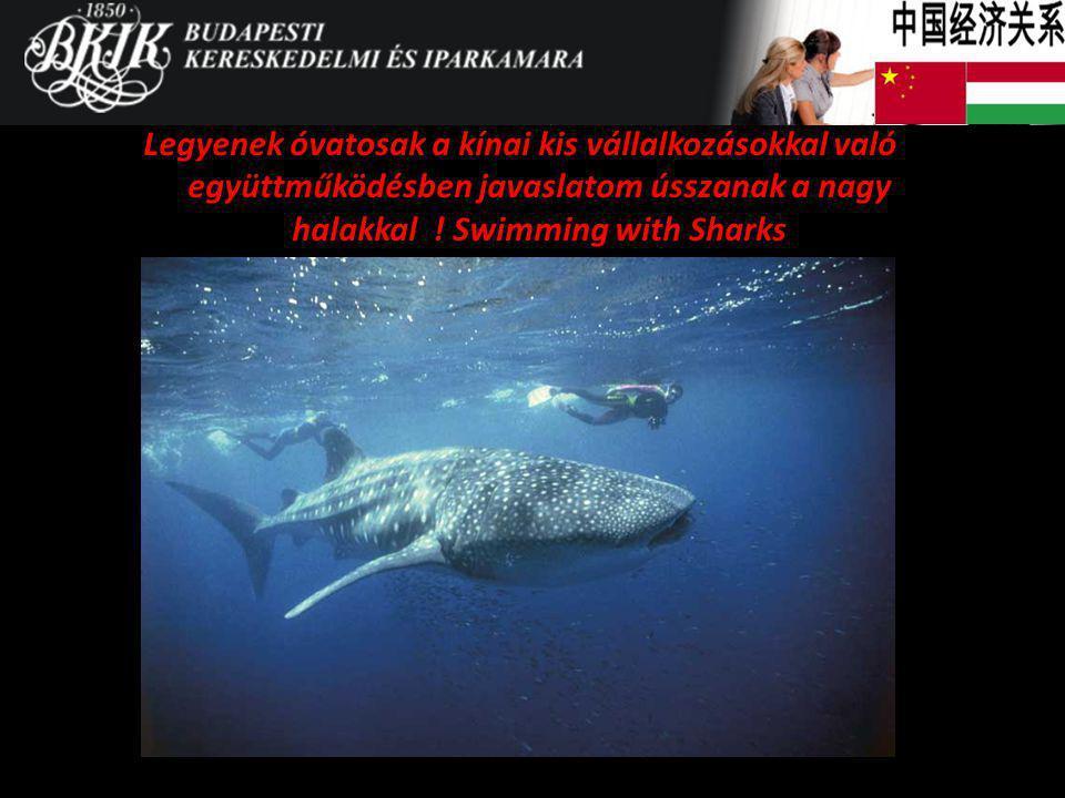 Legyenek óvatosak a kínai kis vállalkozásokkal való együttműködésben javaslatom ússzanak a nagy halakkal ! Swimming with Sharks