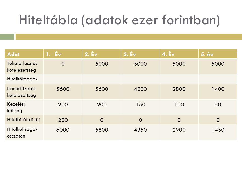Hiteltábla (adatok ezer forintban) Adat1.Év2. Év3. Év4. Év5. év Tőketörlesztési kötelezettség 05000 Hitelköltségek Kamatfizetési kötelezettség 5600 42