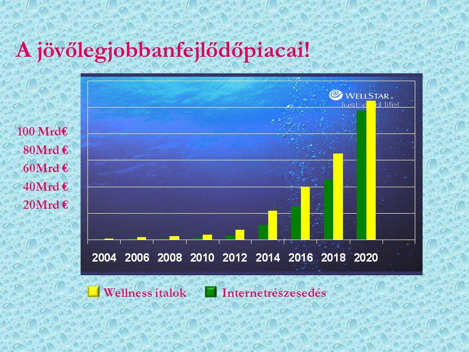 A jövőlegjobbanfejlődőpiacai! Wellness italok Internetrészesedés 100 Mrd€ 80Mrd € 60Mrd € 40Mrd € 20Mrd €