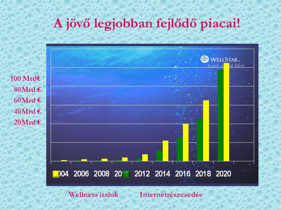 A jövő legjobban fejlődő piacai! Wellness italok Internetrészesedés 100 Mrd€ 80Mrd € 60Mrd € 40Mrd € 20Mrd €