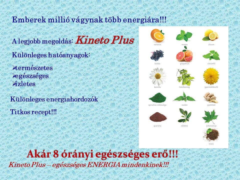 Kineto Plus A legjobb megoldás: Kineto Plus Különleges hatóanyagok:  természetes  egészséges  ízletes A legjobb megoldás: K KK Kineto Plus Különleg