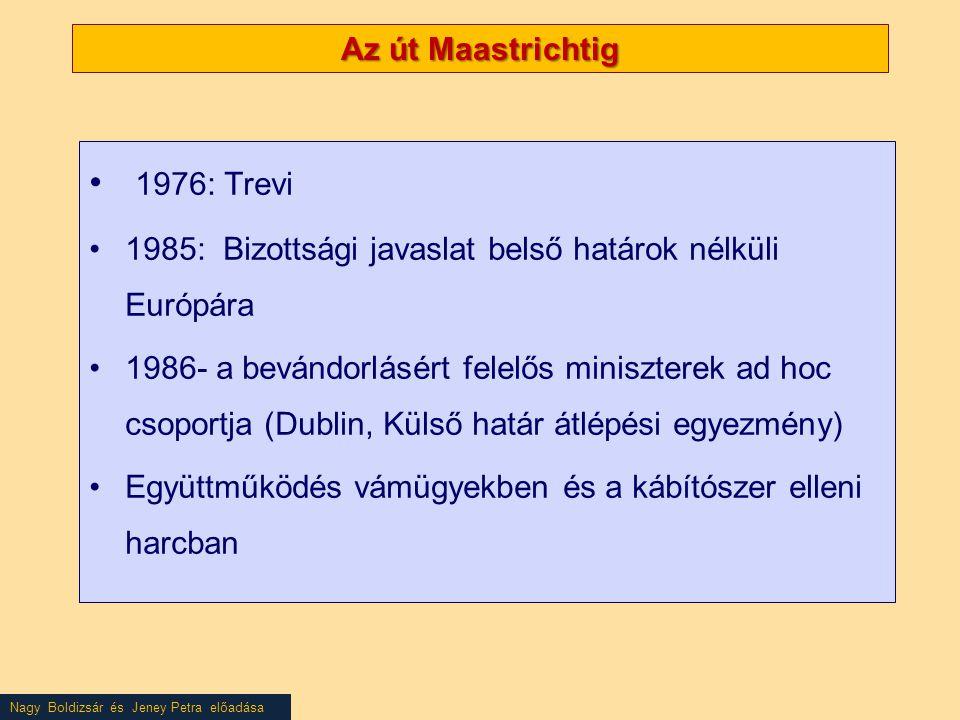 Az út Maastrichtig • 1976: Trevi •1985: Bizottsági javaslat belső határok nélküli Európára •1986- a bevándorlásért felelős miniszterek ad hoc csoportja (Dublin, Külső határ átlépési egyezmény) •Együttműködés vámügyekben és a kábítószer elleni harcban