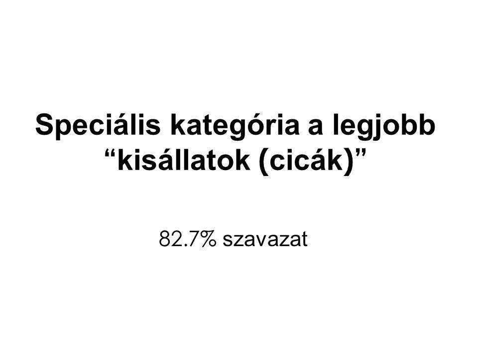 Speciális kategória a legjobb kisállatok ( cicák ) 82.7% szavazat