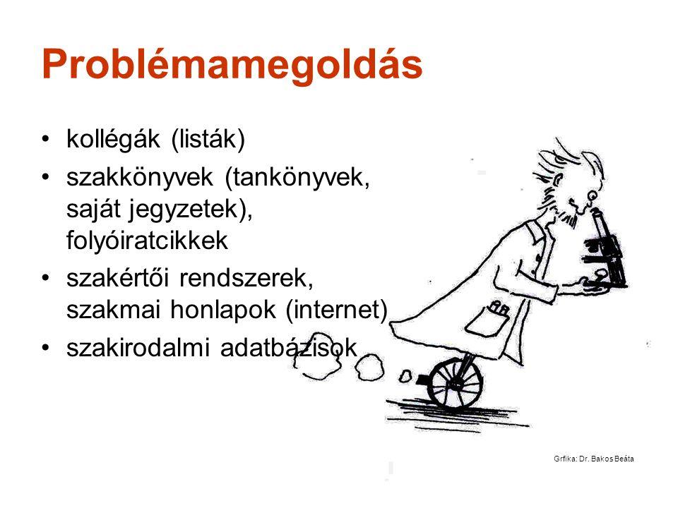 Gárdony, 2008. január 29. Problémamegoldás •kollégák (listák) •szakkönyvek (tankönyvek, saját jegyzetek), folyóiratcikkek •szakértői rendszerek, szakm