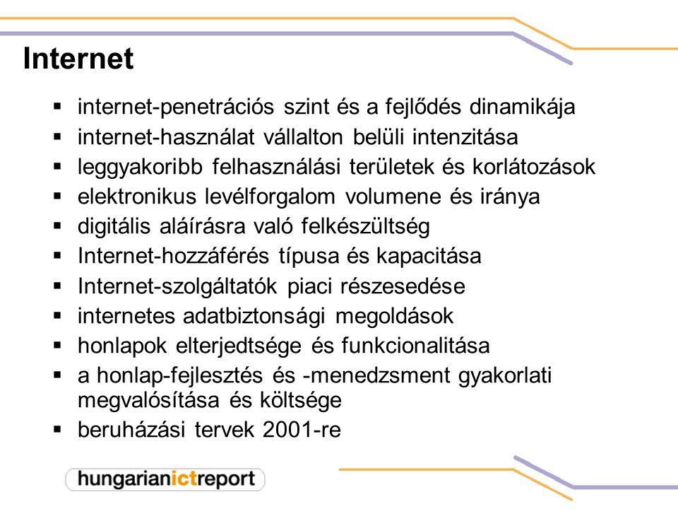 Internet  internet-penetrációs szint és a fejlődés dinamikája  internet-használat vállalton belüli intenzitása  leggyakoribb felhasználási területek és korlátozások  elektronikus levélforgalom volumene és iránya  digitális aláírásra való felkészültség  Internet-hozzáférés típusa és kapacitása  Internet-szolgáltatók piaci részesedése  internetes adatbiztonsági megoldások  honlapok elterjedtsége és funkcionalitása  a honlap-fejlesztés és -menedzsment gyakorlati megvalósítása és költsége  beruházási tervek 2001-re